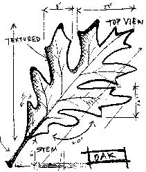 Tim Holtz Rubber Stamp OAK SKETCH Stampers Anonymous P1-1941 zoom image