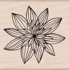 Hero Arts Rubber Stamp NIGHT FLOWER f5720