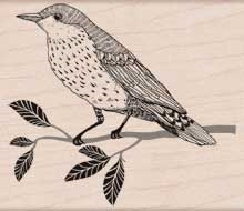 Hero Arts Rubber Stamp WISE BIRD h5719