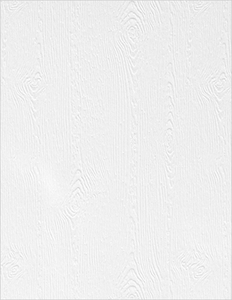 Simon Says Stamp WOODGRAIN CARDSTOCK WHITE 111 LB zoom image