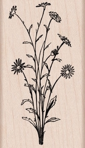Hero Arts Rubber Stamp FLOWER SPRAY G5766 Preview Image