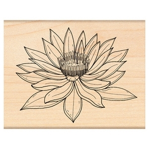 Penny Black Rubber Stamp WATER LILY 4307H