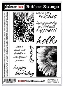 Darkroom Door Cling Stamp BRIGHT BLOSSOMS VOL 1 Rubber UM DDRS107* Preview Image