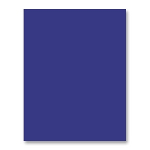 Simon Says Stamp Card Stock BLUE VIOLET