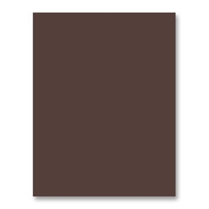 Simon Says Stamp Card Stock 100# DARK CHOCOLATE DC7