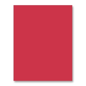 Simon Says Stamp Card Stock 100# LIPSTICK RED LR10