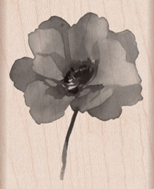 Hero Arts PAINTED POPPY Rubber Stamp g5906 *