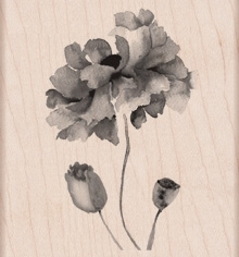 Hero Arts PETALS OF BEAUTY Rubber Stamp k5897  Preview Image