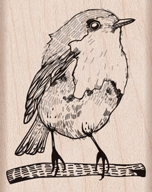 Hero Arts BIRD Rubber Stamp d5890  zoom image
