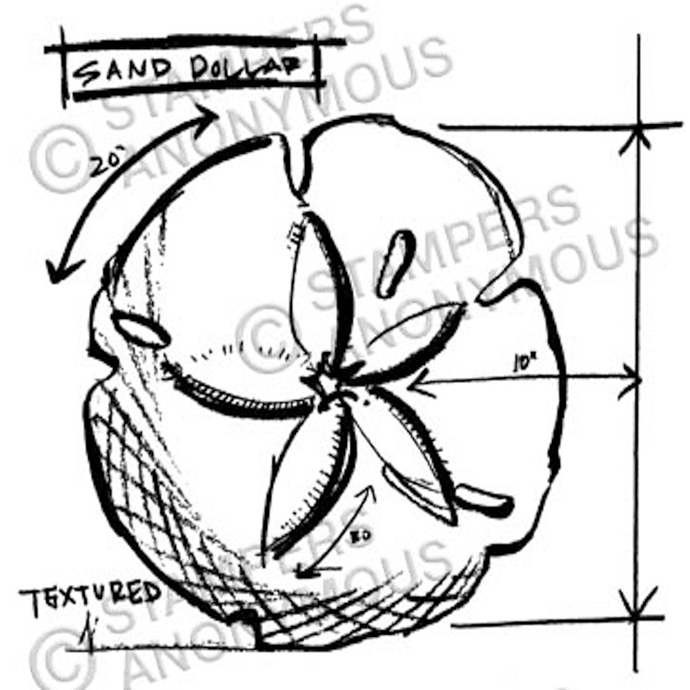 Tim Holtz Rubber Stamp SAND DOLLAR SKETCH Stampers Anonymous M2-2353 zoom image
