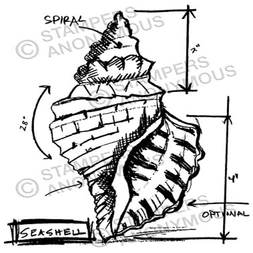 Tim Holtz Rubber Stamp SEASHELL SKETCH Stampers Anonymous P1-2355 zoom image