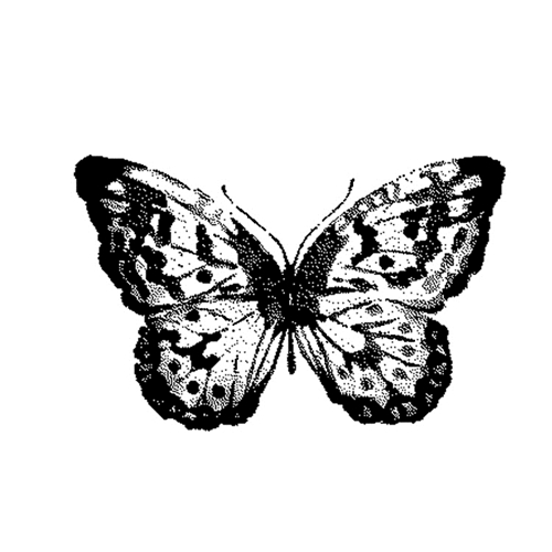 Tim Holtz Rubber Stamp WATERCOLOR BUTTERFLY 2 Stampers Anonymous G2-2566 Preview Image