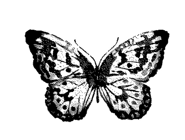 Tim Holtz Rubber Stamp WATERCOLOR BUTTERFLY 2 Stampers Anonymous G2-2566 zoom image