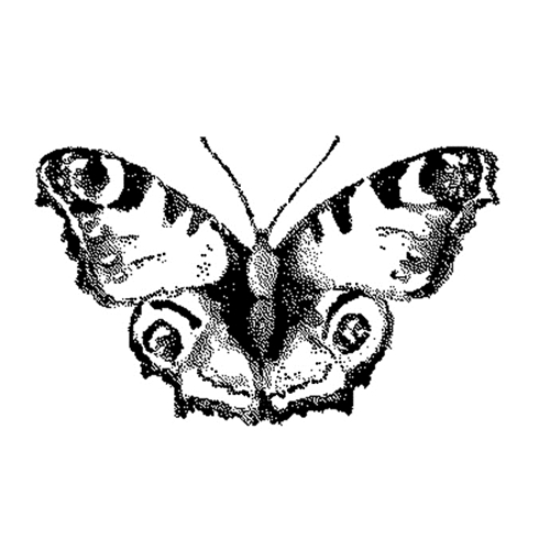 Tim Holtz Rubber Stamp WATERCOLOR BUTTERFLY 3 Stampers Anonymous G2-2567 Preview Image