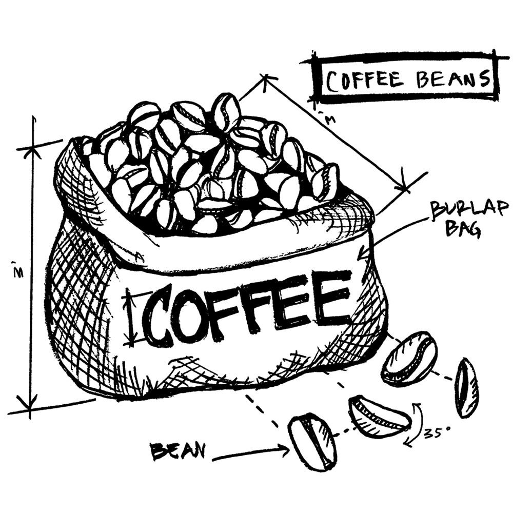 Tim Holtz Rubber Stamp  COFFEE BEANS SKETCH Stampers Anonymous P1-2627 zoom image