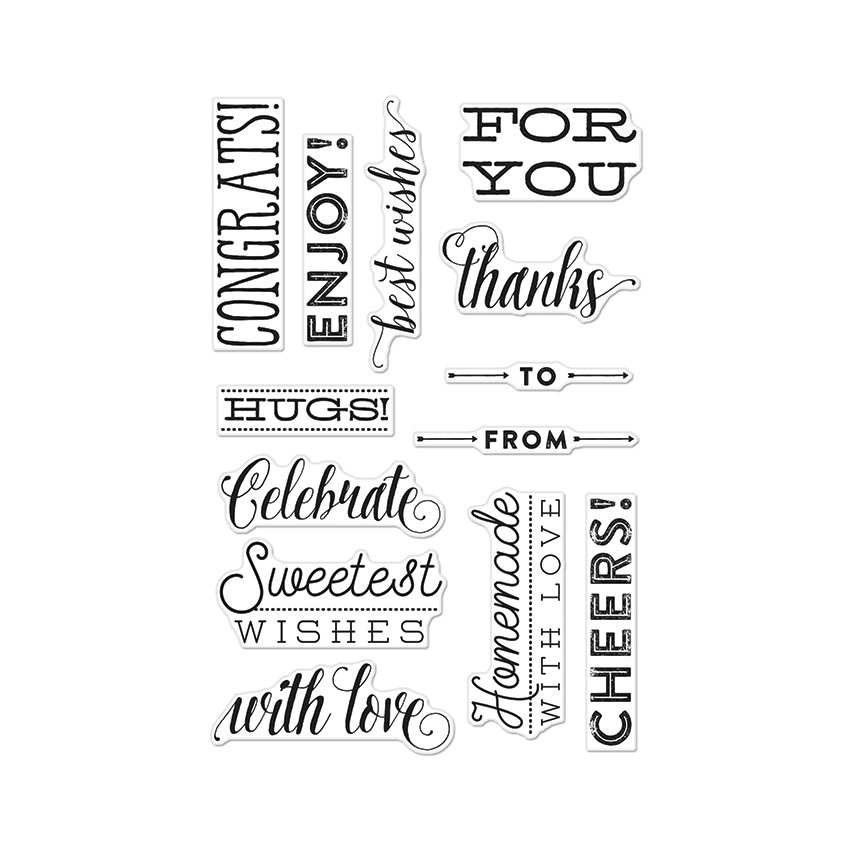Hero Arts Clear Stamps CHEERS MESSAGES BY LIA CL903 Lia Griffith zoom image