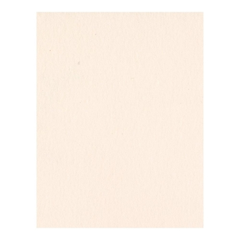 Bazzill PALE ROSE Card Shoppe Heavy Weight 8.5 x 11 Cardstock 305057