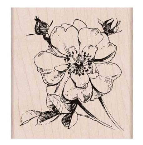 Hero Arts Rubber Stamp ANTIQUE ROSE STEM K6136 zoom image