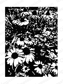 Impression Obsession Cling Stamp DAISY FIELD E7809