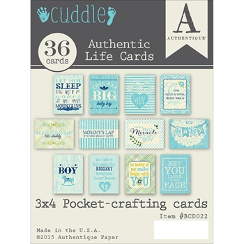 Authentique CUDDLE BOY 3 x 4 Journaling Cards BCD022