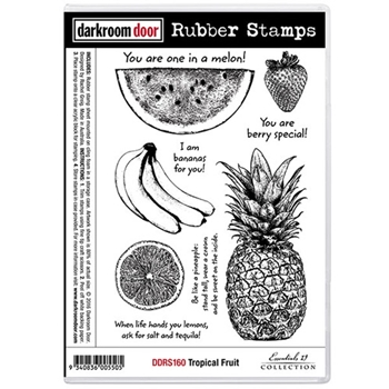 Darkroom Door Cling Stamp TROPICAL FRUIT Rubber UM DDRS160