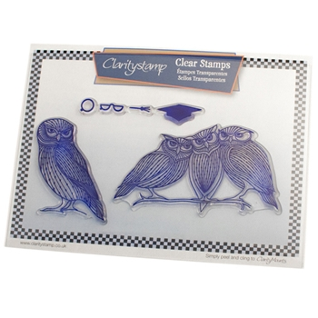 Claritystamp WISE OLD OWLS Clear Stamps and Mask STABI10039A5