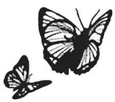 Tim Holtz Rubber Stamp BUTTERFLIES Butterfly Stampers Anonymous H2-1340