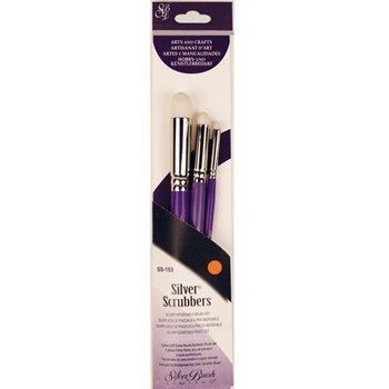 Silver SCRUBBERS DOME ROUND Brush Set SS153