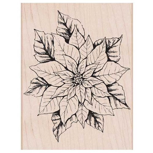 Hero Arts Rubber Stamp ANTIQUE POINSETTIA K6176 Preview Image