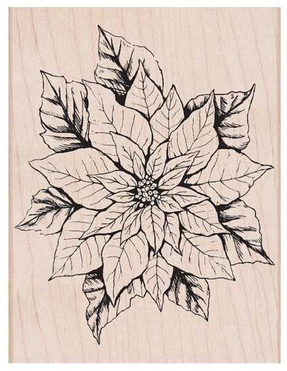 Hero Arts Rubber Stamp ANTIQUE POINSETTIA K6176 zoom image