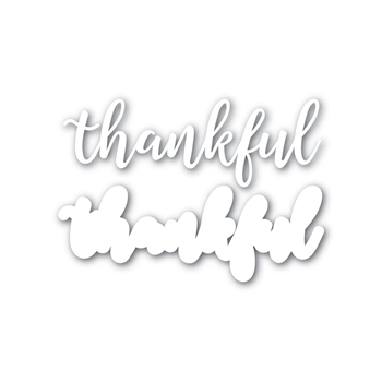 Simon Says Stamp THANKFUL Wafer Dies SSSD111625 STAMPtember
