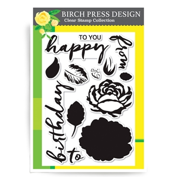 Birch Press Design BRUSHED BIRTHDAY GREETINGS Clear Stamps CL8114