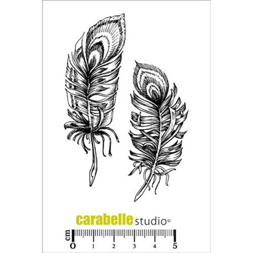 Carabelle Studio LA FOLIE DES PLUMES Cling Stamp SA70119 Preview Image