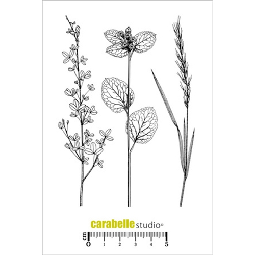 Carabelle Studio HERBIER 2 Cling Stamp SA60236 Preview Image
