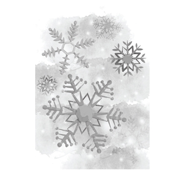 DSC-005 Spellbinders COLD SPELL Holiday 3D Shading Stamp