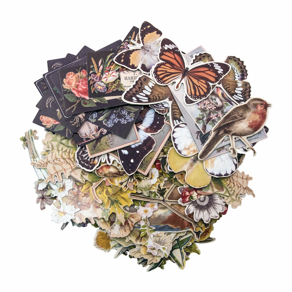 Tim Holtz Idea-ology BOTANICAL Layers Paperie TH93554 zoom image