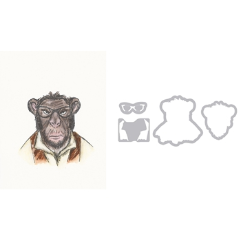 Tim Holtz Sizzix Framelits HIPSTER CHIMP Wafer Thin Die Set 662248
