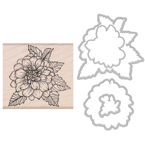 Hero Arts ARTISTIC DAHLIA Rubber Stamp and Die Combo SB154 Preview Image