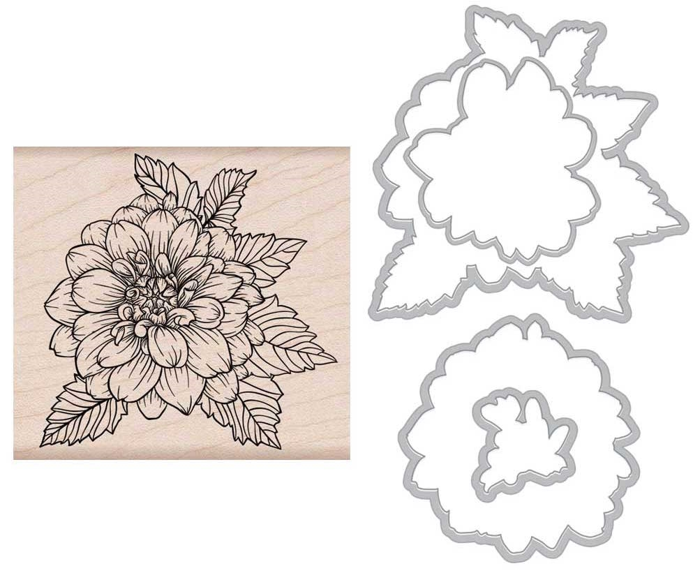 Hero Arts ARTISTIC DAHLIA Rubber Stamp and Die Combo SB154 zoom image