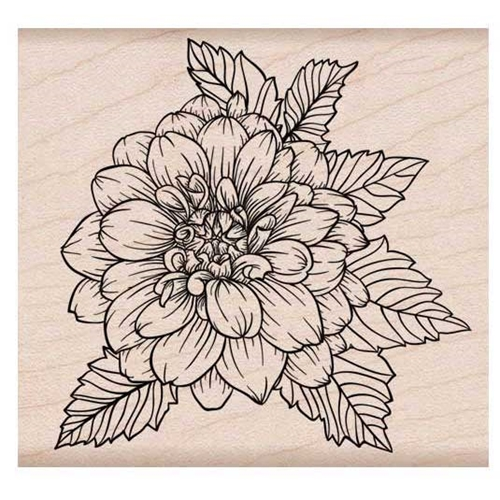 Hero Arts Rubber Stamps ARTISTIC DAHLIA K6214 Preview Image