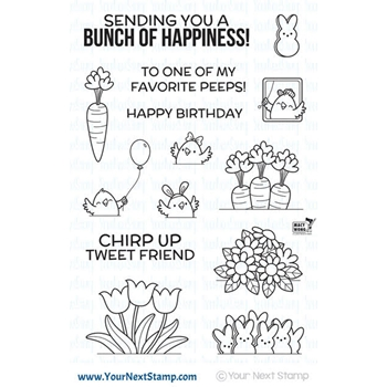 Your Next Stamp ALL ABOARD BUNCH OF HAPPINESS Clear Stamp CYNS526