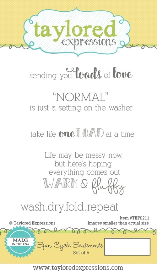 Taylored Expressions SPIN CYCLE SENTIMENTS Cling Stamp Set TEPS211 zoom image