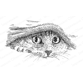 Impression Obsession Cling Stamp KITTY UNDER COVERS G2537