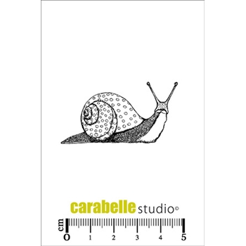 Carabelle Studio UN ESCARGOT Cling Stamp SMI0164