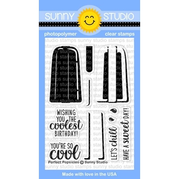 Sunny Studio PERFECT POPSICLES Clear Stamp Set SSCL162