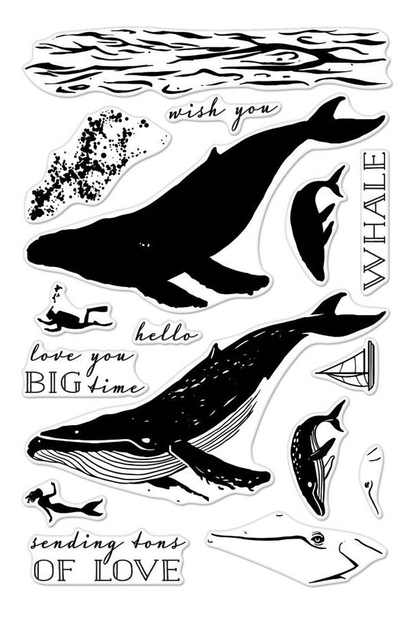 Hero Arts Clear Stamps Color Layering BLUE WHALE CM162 zoom image