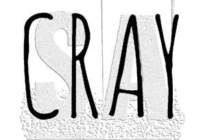 Tim Holtz Rubber Stamp CRAY Stampers Anonymous C1-2946