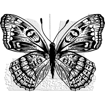 Tim Holtz Rubber Stamp BUTTERFLY 10 Stampers Anonymous J1-2985