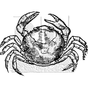 Tim Holtz Rubber Stamp CRAB Stampers Anonymous K1-3034