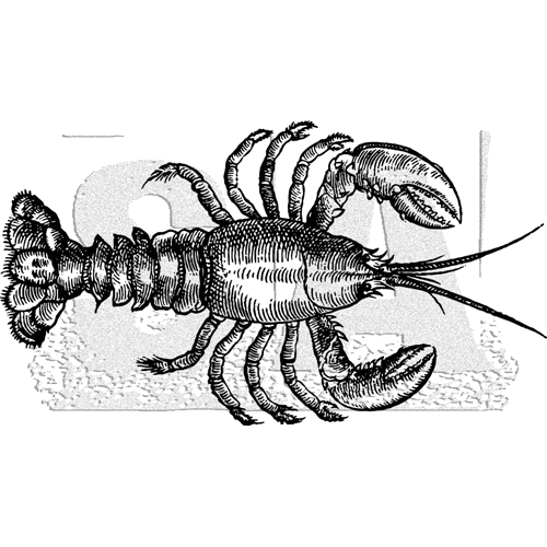 Tim Holtz Rubber Stamp LOBSTER Stampers Anonymous K3-3035 Preview Image